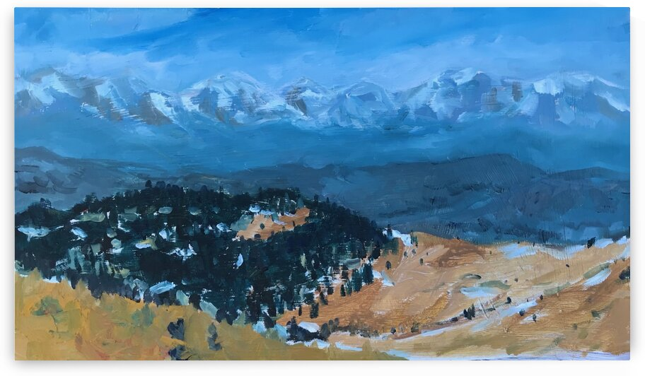 Colorado Mountain Range  by J HARRIS