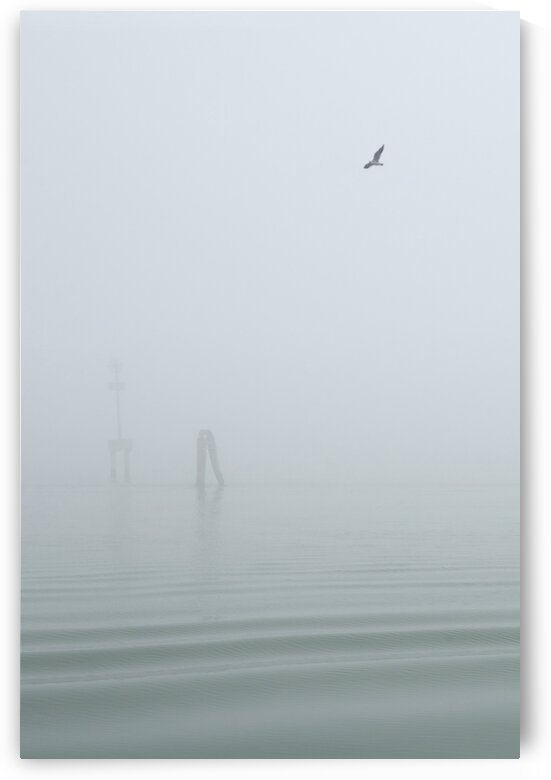Foggy Venice by Aquamarine