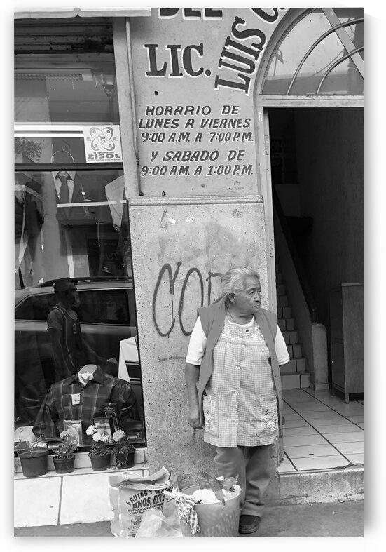 Comprador Mujer by Nicho