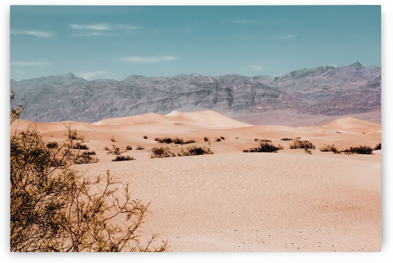 Sandy desert with mountain background at Death Valley national park California USA by TimmyLA