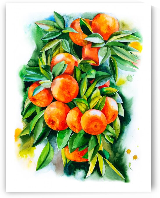 Watercolor oranges by Aquamarine