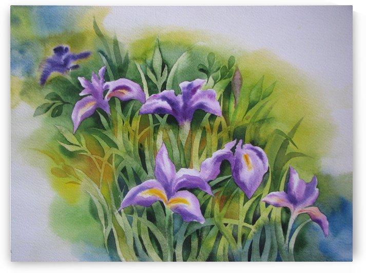 Lily by Nazanin Hossein Mardi