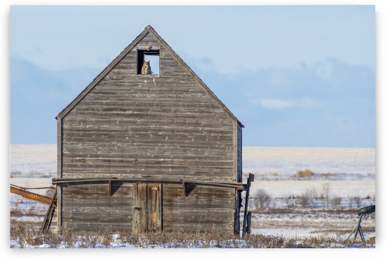 1030 - Room With A View by Ken Anderson Photography
