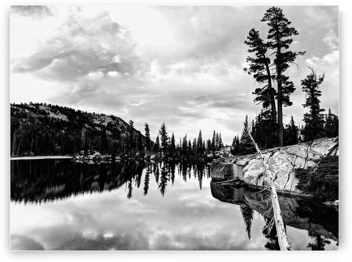 Sierra reflections by Jay Dohner