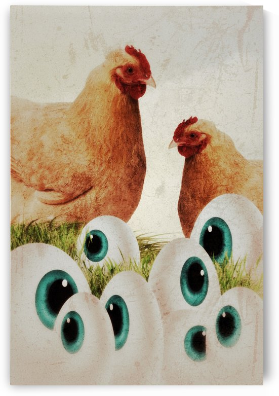 Chicken eyes by Dagmar Marina