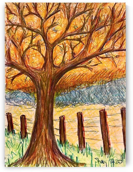 Fall yellow leaves in pencil - Bellville TX by Shay Morrow