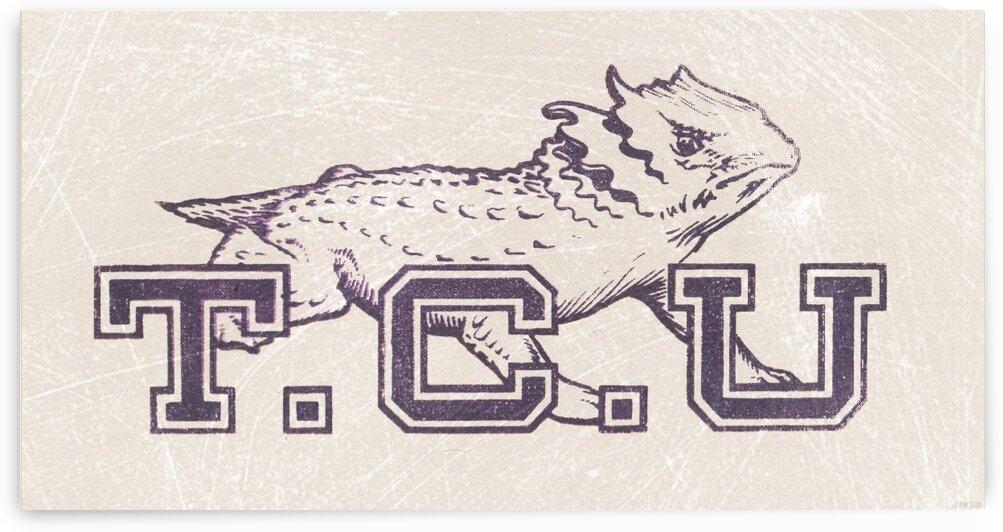 Vintage TCU Art by Row One Brand