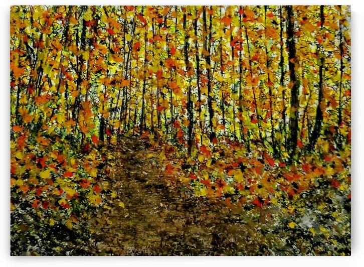 Enter Autumn  by djjf