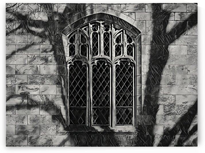 Shadow on gothic window by James M Gallagher