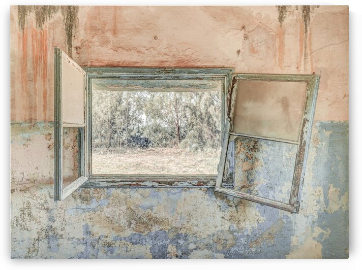 Window, looking out of a derelict building by Assaf Frank