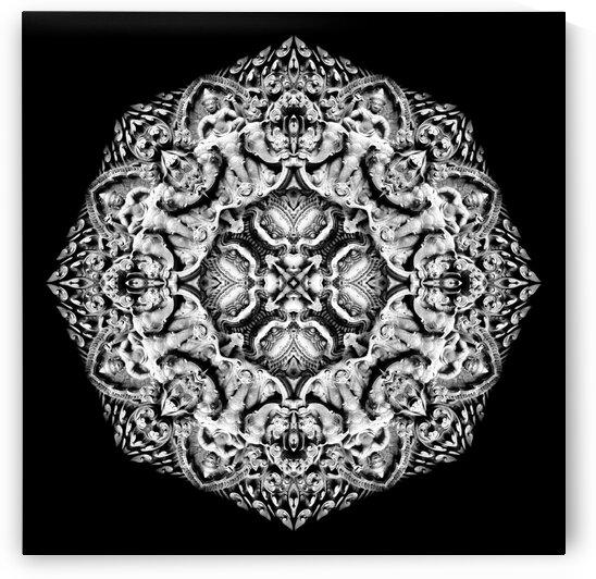 Intricate carvings_MG_8524_2 by Chris Perkins