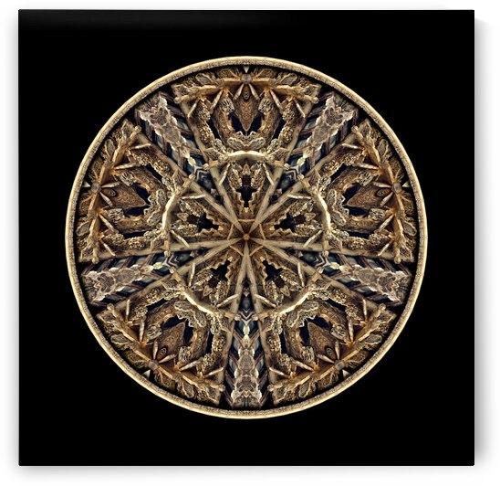 Wood carvings_MG_1383_2 by Chris Perkins