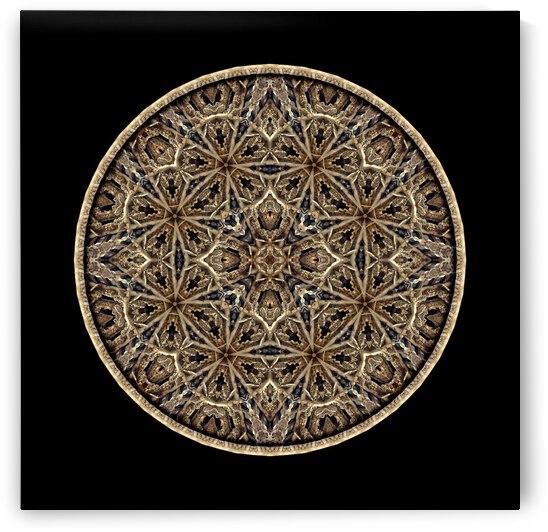 Wood carvings_MG_1383_4 by Chris Perkins