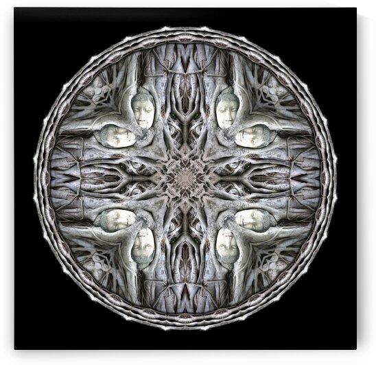 Buddha Head Tree_MG_5967_2 by Chris Perkins