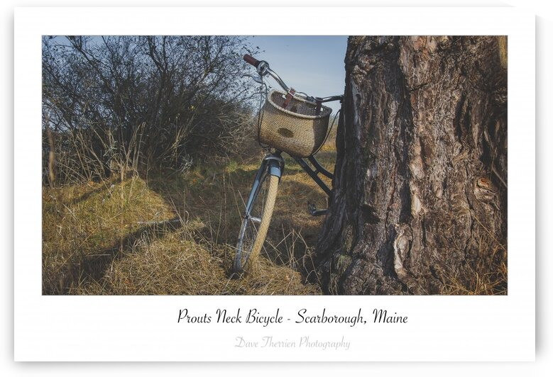 Prouts Neck Bicycle by Dave Therrien
