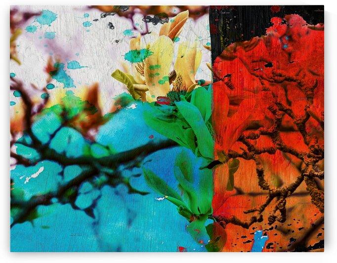 magnolia by Connie Schofield Art