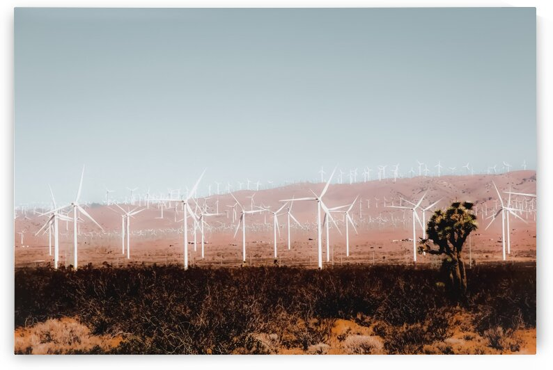 Wind turbine in the desert with blue sky at Kern County California USA by TimmyLA