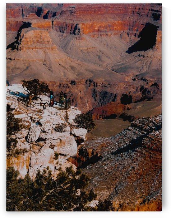 Desert scenic at Grand Canyon national park Arizona USA by TimmyLA