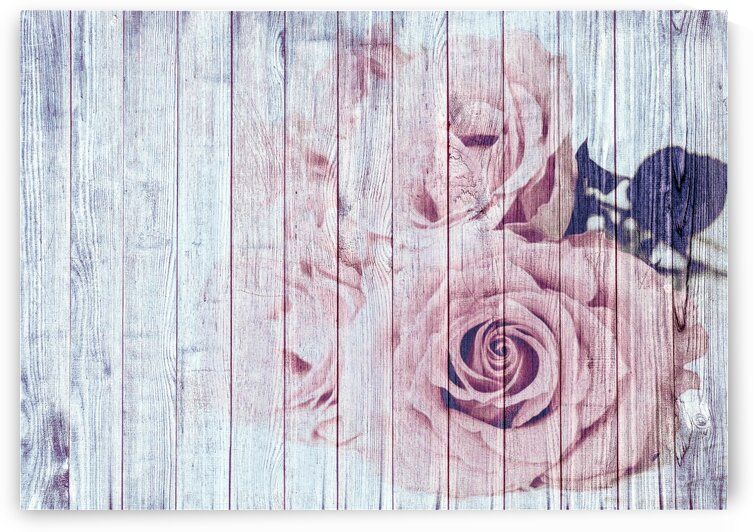 Shabby Chic Dusky Pink Roses On Wood by Shabby Chic Art