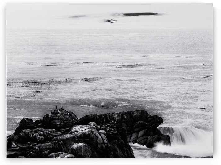 ocean sunset view in California USA in black and white by TimmyLA