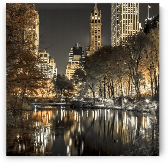 Evening view of Central Park in New York City by Assaf Frank