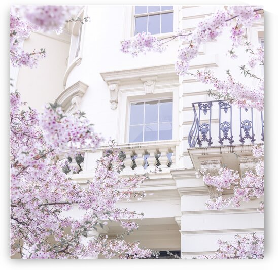 Spring in London by Assaf Frank