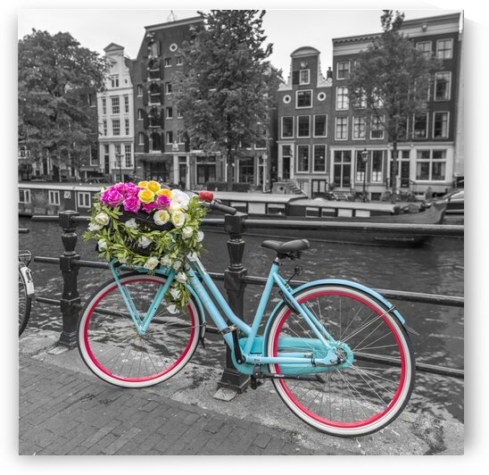 Bicycle with bunch of roses on bridge, Amsterdam by Assaf Frank