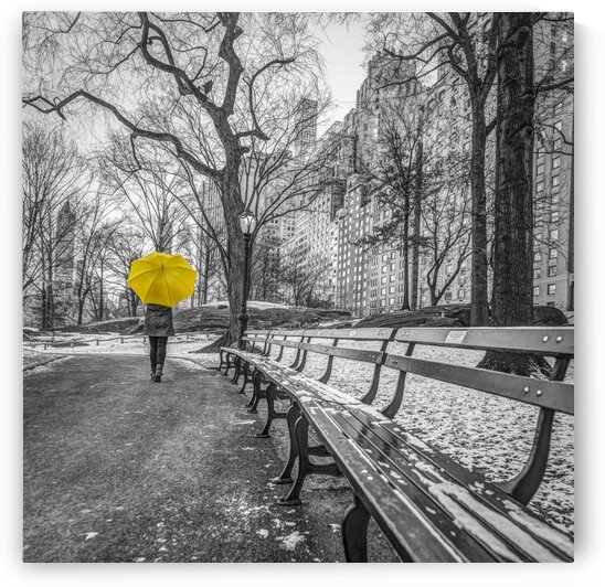 Tourist on pathway with Yellow umbrella at Central park, New York by Assaf Frank