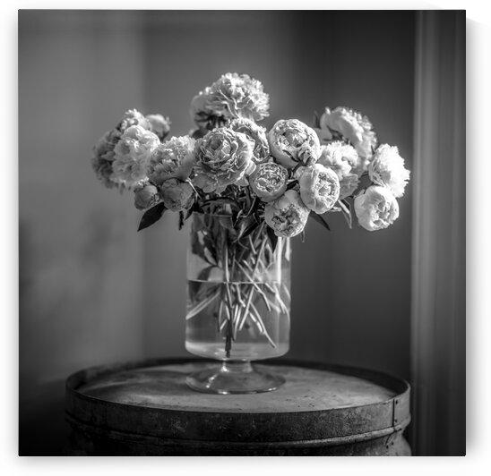 Peonies in flower vase by Assaf Frank