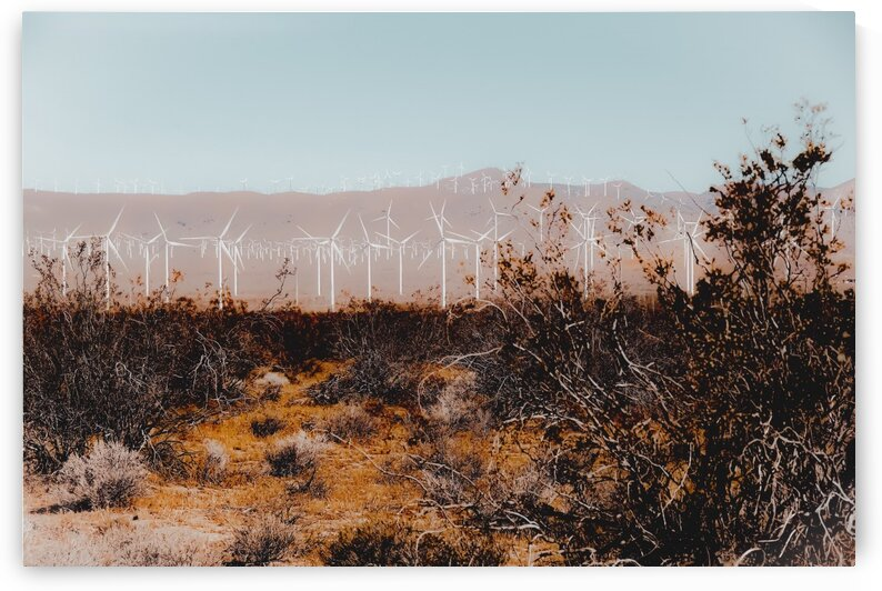 Desert and wind turbine with mountain background at Kern County California USA by TimmyLA