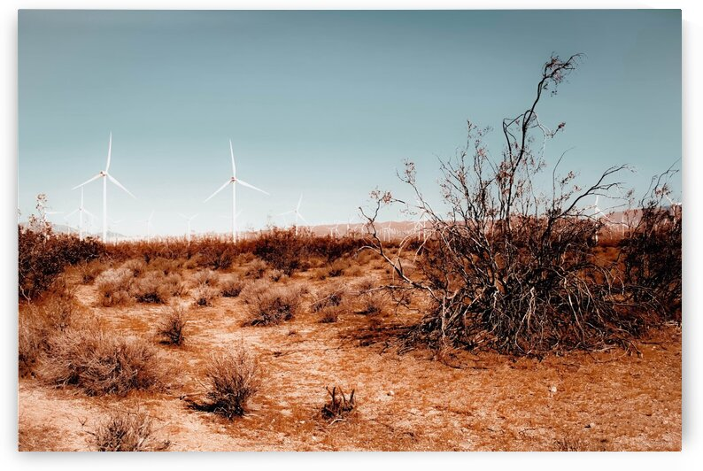 Desert and wind turbine with blue sky at Kern County California USA by TimmyLA