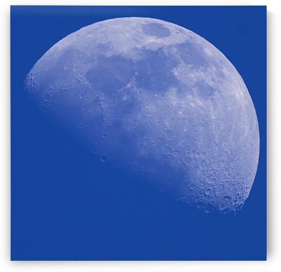 Blue Moon by Guy Churchward