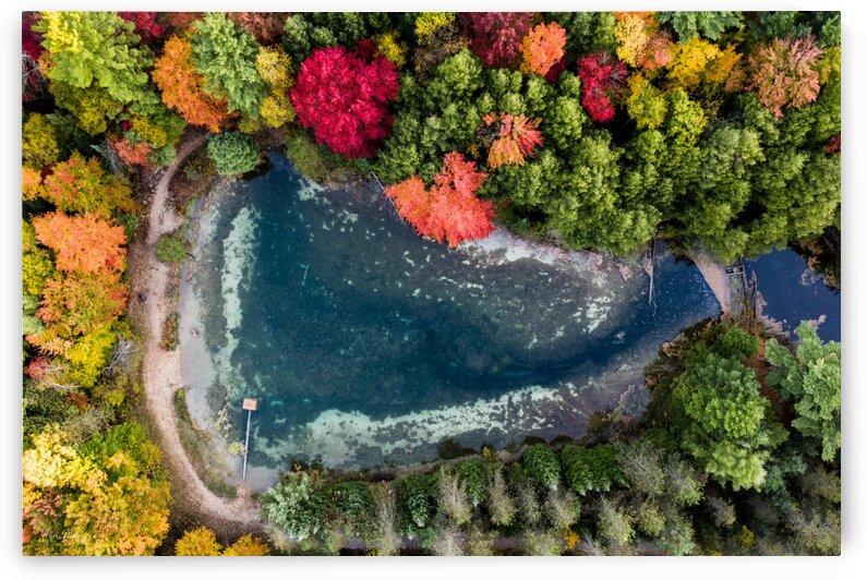 Above a Triangular Pond by Chris Dickey
