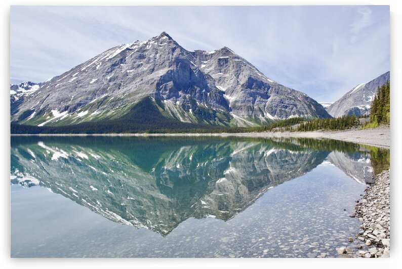 Perfect Reflection by Stevo Rakic Bato