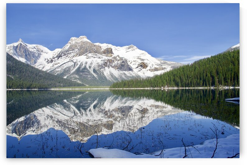 Emerald Lake by Stevo Rakic Bato