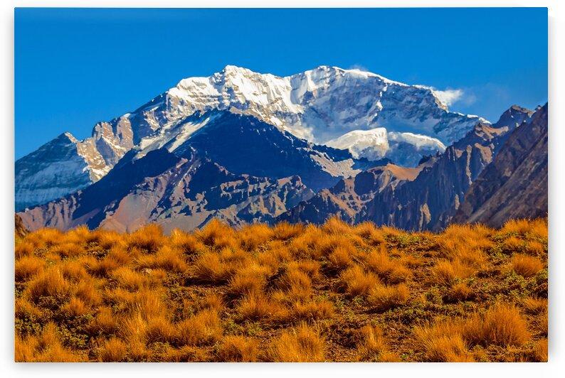 AconcaguaParkLandscapeMendozaArgentina by Daniel Ferreia Leites Ciccarino