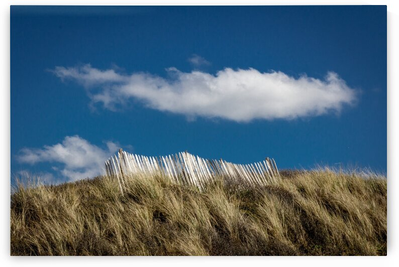 Beach Fence with Cloud by bj clayden photography