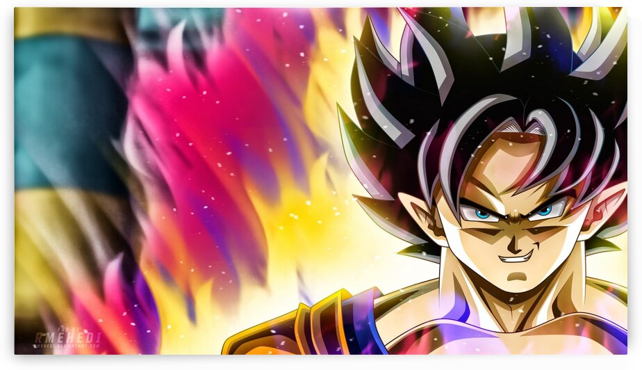 DragonBallSonGoku3 by animenew
