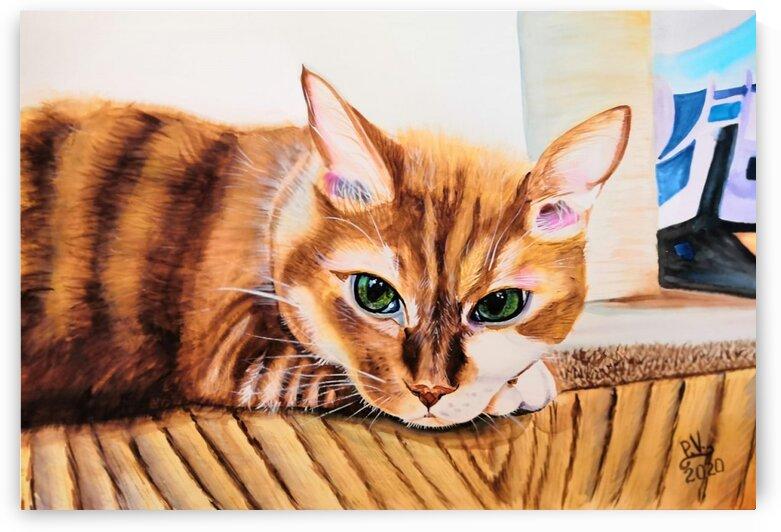 Cat On Quarantine by Valentyna Pylypenko