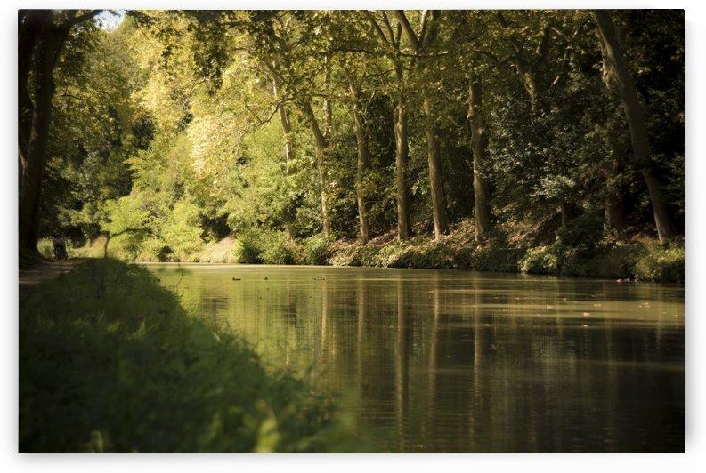 Canal  Carcassone by Fabien Dormoy