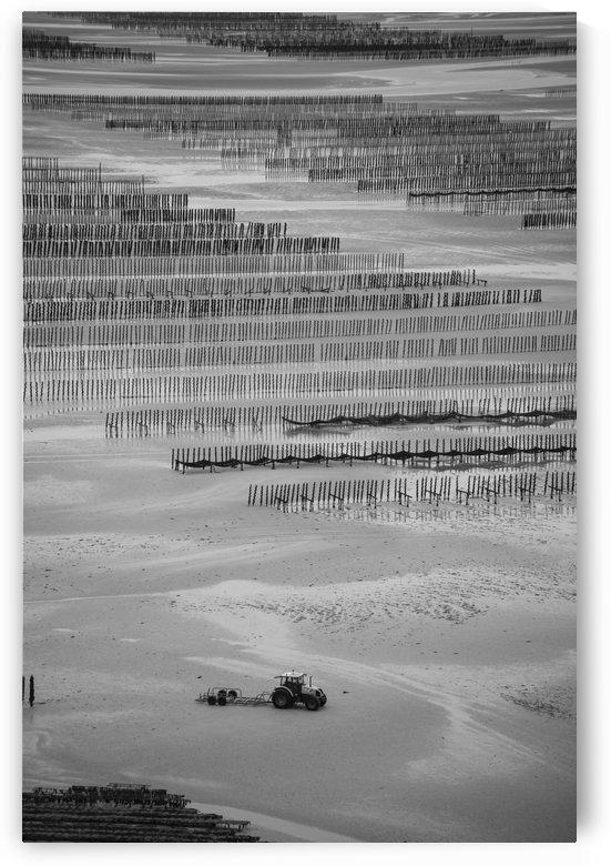 Cancale by Fabien Dormoy