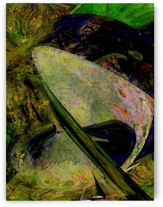 Polloga by Helmut Licht