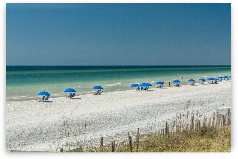 White Sand Beach with Blue Umbrellas by bj clayden photography