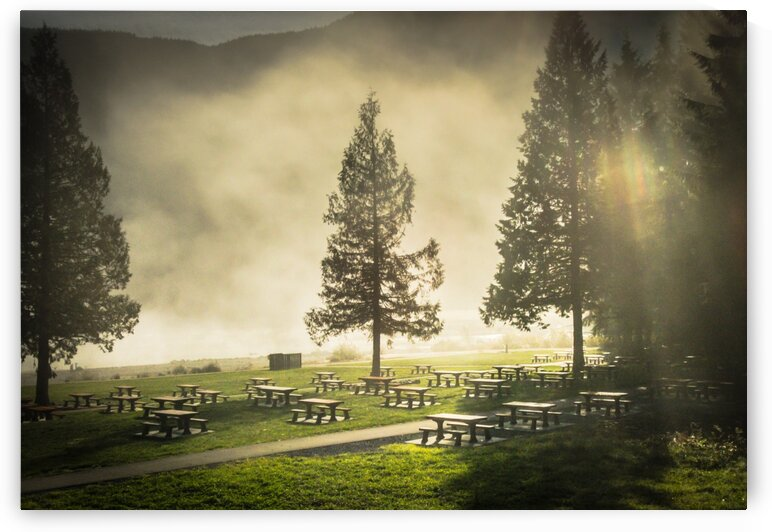 Summers Graveyard by bj clayden photography
