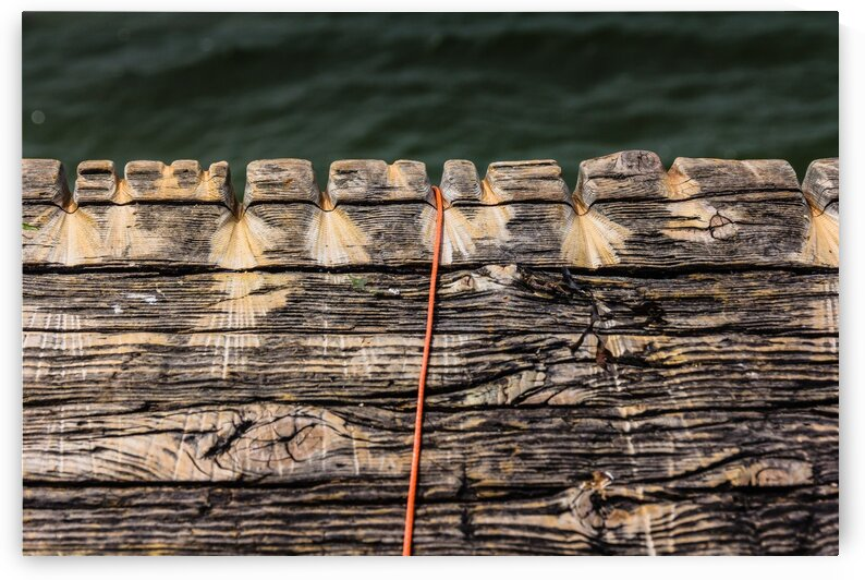Old Fish Line by bj clayden photography