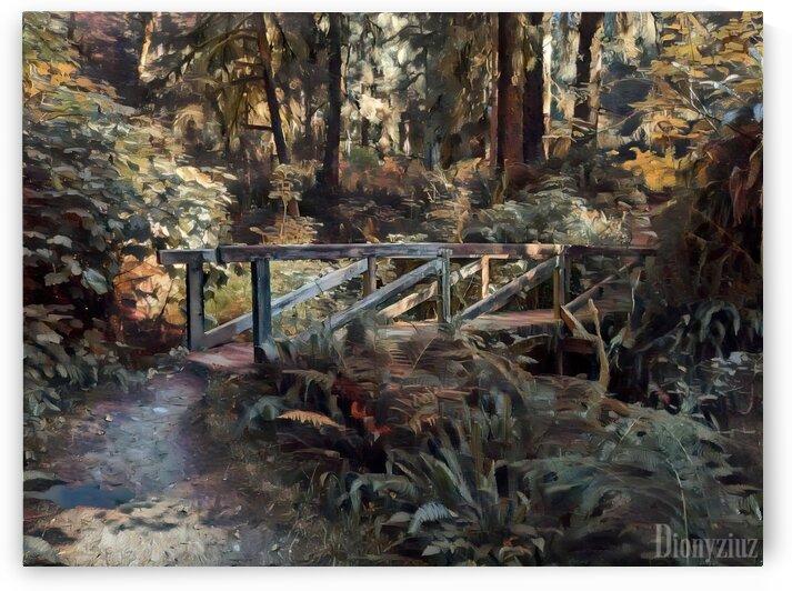 Redwood forrest by Dionyziuz