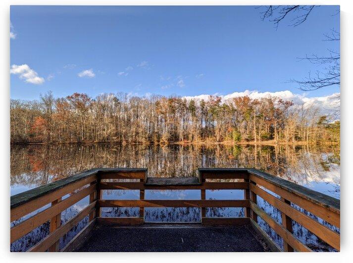 Dock along a lake  by Michael Geyer