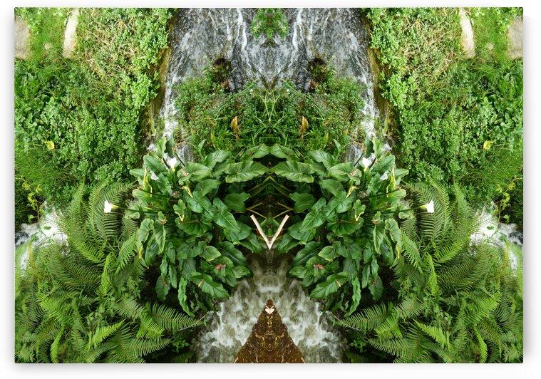 green4 by Carlos Manzcera