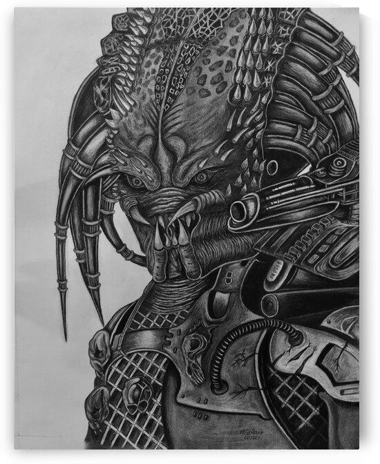 Predator by Morteza Golpoor