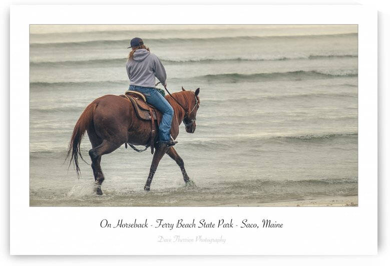 On Horseback by Dave Therrien